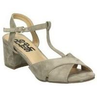 Schoenen Dames Sandalen / Open schoenen Refresh 64330 Marron