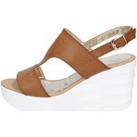 Schoenen Dames Sandalen / Open schoenen Querida Sandalen BR159 ,