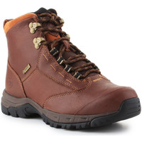 Schoenen Dames Laarzen Ariat Berwick lace GTX Insulated 10016298 brown