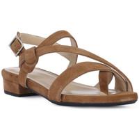 Schoenen Dames Sandalen / Open schoenen Frau CAMOSCIO SELLA Marrone