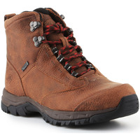 Schoenen Dames Wandelschoenen Ariat Trekking shoes  Berwick Lace Gtx Insulated 10016229 brown