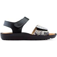 Schoenen Dames Sandalen / Open schoenen Dtorres Sandalen DORRES BLANES 06 PLATA