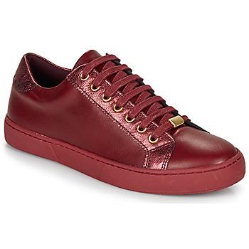Schoenen Dames Lage sneakers André BERKELEY Bordeau