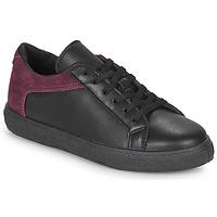 Schoenen Dames Lage sneakers André BAILA Zwart