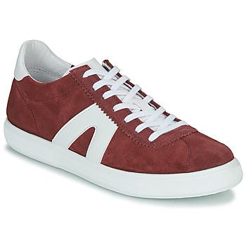 Schoenen Heren Lage sneakers André GILOT Bordeau