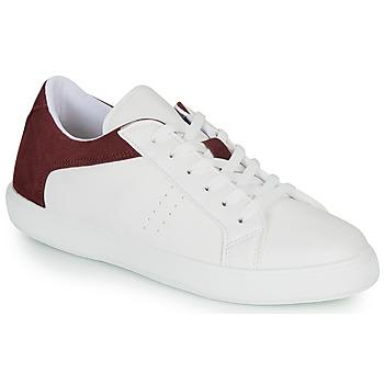 Schoenen Heren Lage sneakers André BIOTONIC Wit / Bordeau
