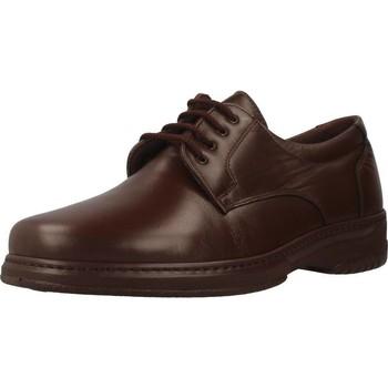 Schoenen Heren Derby Pinoso's 5975 H Bruin