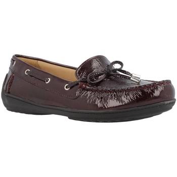 Schoenen Dames Bootschoenen Geox D JAMILAH 2FIT Bruin