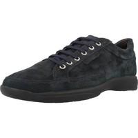 Schoenen Heren Lage sneakers Stonefly SEASON II Blauw