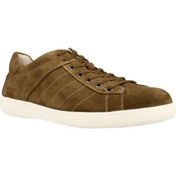 Schoenen Heren Lage sneakers Stonefly OSCAR 1 Bruin