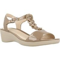 Schoenen Dames Sandalen / Open schoenen Stonefly VANITY III 11 Bruin