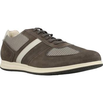 Schoenen Heren Lage sneakers Stonefly WALKY 4 Bruin