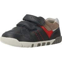Schoenen Jongens Lage sneakers Chicco GASTON Blauw