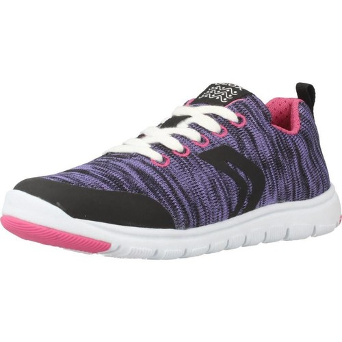 Schoenen Meisjes Lage sneakers Geox J XUNDAY GIRL Violet