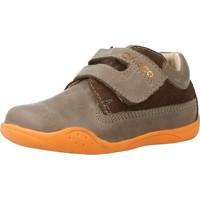 Schoenen Jongens Lage sneakers Chicco GRIMAL Bruin