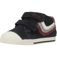 Schoenen Jongens Hoge sneakers Chicco 1060434 Blauw