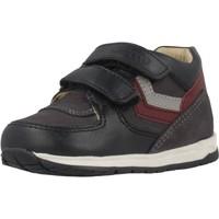 Schoenen Jongens Hoge sneakers Chicco 1060457 Blauw