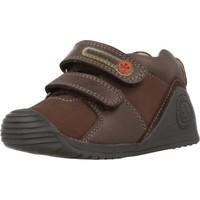 Schoenen Jongens Lage sneakers Biomecanics 181145 Bruin
