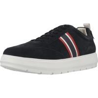 Schoenen Heren Lage sneakers Geox U KAULA D Blauw