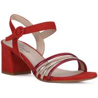 Schoenen Dames Sandalen / Open schoenen Priv Lab SANDALO 1577 Rosso