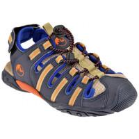 Schoenen Kinderen Sandalen / Open schoenen Lumberjack  Blauw