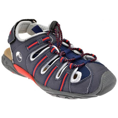 Schoenen Kinderen Sandalen / Open schoenen Lumberjack  Grijs