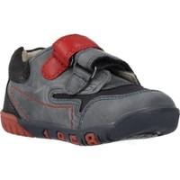 Schoenen Jongens Lage sneakers Chicco 1060451 Blauw