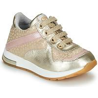 Schoenen Meisjes Lage sneakers GBB LELIA Goud / Beige