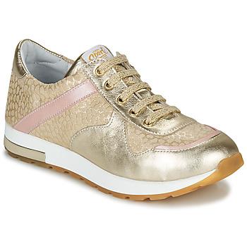 Schoenen Meisjes Lage sneakers GBB LELIA Beige / Goud
