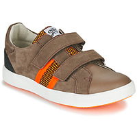 Schoenen Jongens Lage sneakers GBB AVEDON Bruin