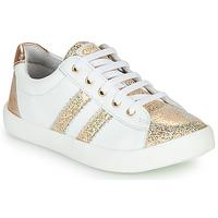Schoenen Meisjes Lage sneakers GBB MAPLUE Wit / Goud