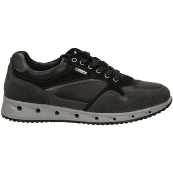 Schoenen Heren Lage sneakers Igi&co ULSGT 21389 grisc-grigio-scuro
