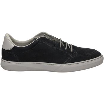 Schoenen Heren Lage sneakers Frau AMALFI blugr-blu-grigio