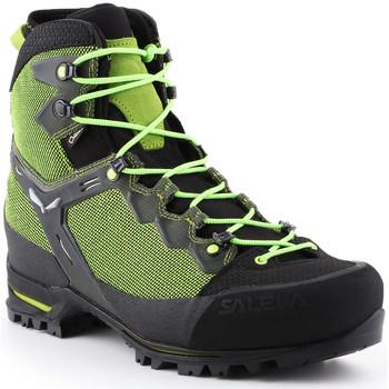 Schoenen Heren Wandelschoenen Salewa Trekking shoes  Ms Raven 3 GTX 361343-0456 green
