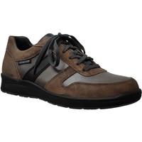 Schoenen Heren Lage sneakers Mephisto Vito Bruin / grijs leer