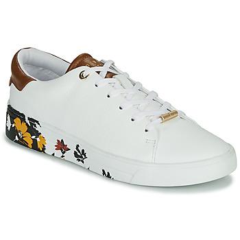 Schoenen Dames Lage sneakers Ted Baker WENIL Wit