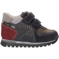 Schoenen Jongens Lage sneakers Nero Giardini A724331M Blue Gray and Bordeaux