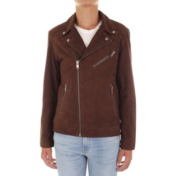 Textiel Heren Wind jackets Selected 16065839 Marrone