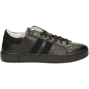 Schoenen Heren Lage sneakers Womsh KINGSTON black