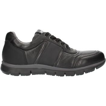 Schoenen Heren Lage sneakers NeroGiardini A800482U Black