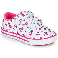 Schoenen Meisjes Lage sneakers Chicco FRANCY Wit / Roze