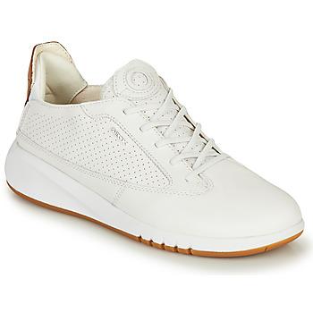 Schoenen Dames Lage sneakers Geox D AERANTIS Wit