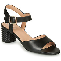 Schoenen Dames Sandalen / Open schoenen Geox D ORTENSIA MID SANDA Zwart