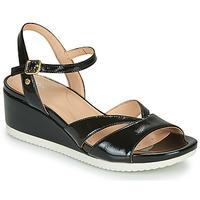 Schoenen Dames Sandalen / Open schoenen Geox D ISCHIA Zwart