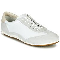 Schoenen Dames Lage sneakers Geox D VEGA Wit / Grijs