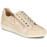 Schoenen Dames Lage sneakers Geox D MYRIA Nude / Beige