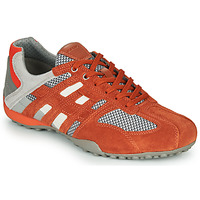 Schoenen Heren Lage sneakers Geox UOMO SNAKE Rood / Grijs