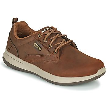 Schoenen Heren Lage sneakers Skechers DELSON ANTIGO Bruin