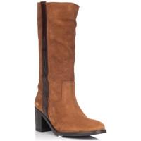 Schoenen Dames Hoge laarzen Zapp 9053 Bruin
