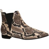 Schoenen Dames Low boots Andrea Zali DIAMANT roccia
